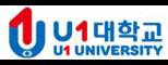 유원대학교